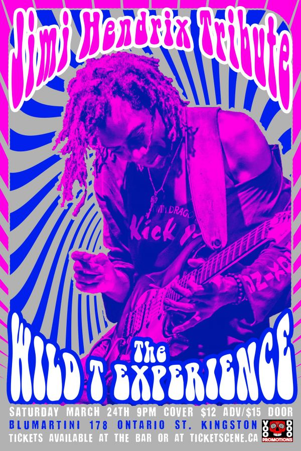 Jimi Hendrix tribute by the Wild T Experience