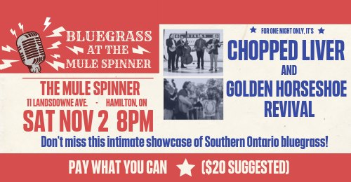 Bluegrass at the Mule Spinner